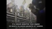 Земляни/това което не знаем/-документален филм