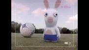 Анимация - Факти За Зайците