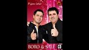 Boro i Sale - Fantasticna (BN Music)