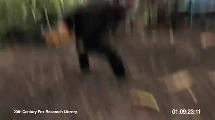 Маймуна стреля с калашник!