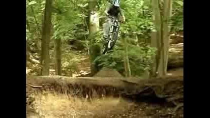 Freeride Dirt Jumps Biking