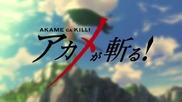 Akame Ga Kill! episode 12 (бг събс)