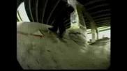 Bam Margera Skate