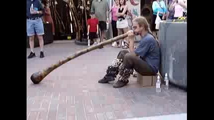 Didgerido