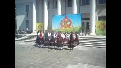 Мегданско 2011 с.лозарево