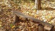 """""""Моята новина"""": Пейките в Борисовата градина"""