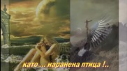 Dragana Mirkovic - Milo moe sto te nema