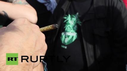 Стотици на протест в Аржентина за легализиране на канабиса