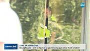 МВР показа кадри от акцията срещу Миню Стайков