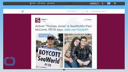 SeaWorld Suspends Worker Accused of Posing as PETA Activist