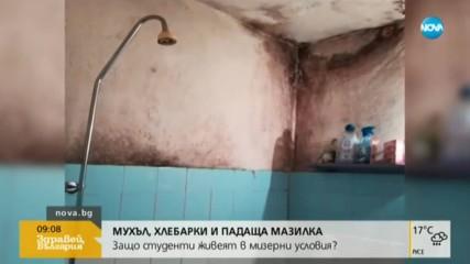 Потресаваща мизерия в студентски общежития в София