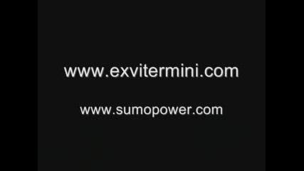 Sumo Power R34 - Gtr
