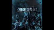 Sturmrebellen - Die Rache (2012)