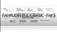 Fahrudin Buljubasic Faks - Djevica i rak