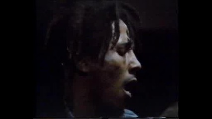 Bob Marley & The Wailers- Lively Up Yourself (1974)
