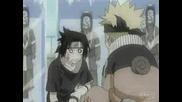 Naruto Hamster Idiotism