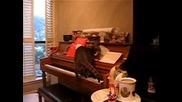 Котарак пада от пиано
