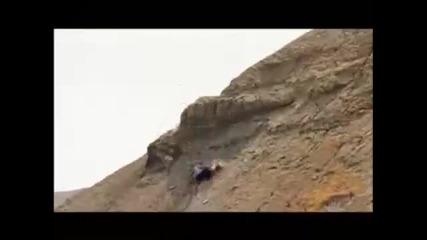 mountainbike crashes