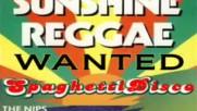 The Nips - Sunshine Reggae 1983 cover