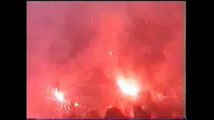 Panatinaikos Fans