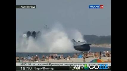 Руски зубър на плажа