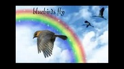 Ray Charles - Somewhere Over The Rainbow (lyrics)