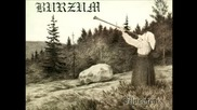 Burzum - Filosofem Full Album
