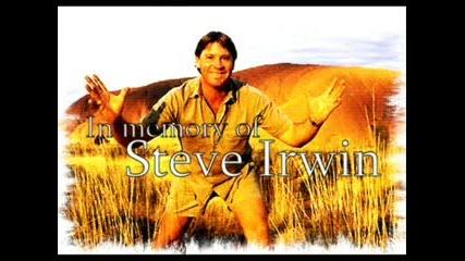 Stewe Irwin