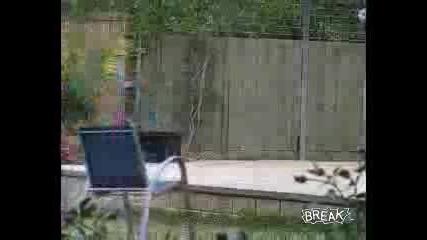 Момче Пада Върху Стол