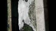 Fontanite v gr.montana :d