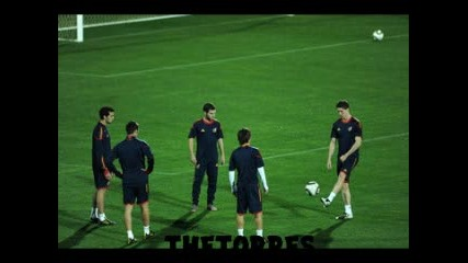 Fernando Torres - Mondial 2010 - New :p -