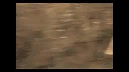 Tрейлър - Глупакът Мафиот