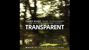 Dustin O'halloran - Transparent Theme ( Solo Piano version )