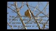 Любэ - Березы (ТЕКСТ)
