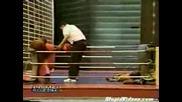 Маймуни Се Боксират!