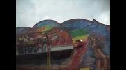 cwetnica na stenata (2)