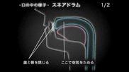 Enjin Daichi How To Beatbox Lesson1