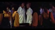 Elvis - I Cant stop.flv