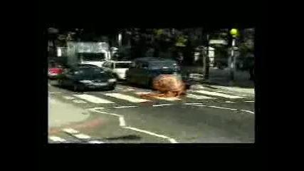 Човекът - охлюв на пешеходна пътека