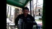 Луд кавър на Пинк Флоид с акордеон