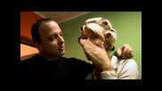 Djogani i Mile Kitic  - Cetri strane sveta (Nema vise cile Mile)