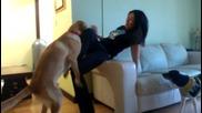 Азиатка и куче си играят :)