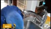 Папагал прави сутрешния си тоалет (ВИДЕО)