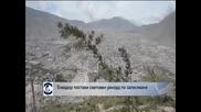 Еквадор постави световен рекорд по залесяване