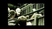 Slipknot (скоро през август албум )