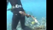 Акула Бебе Хапе Водoлаз По Задника! Смях