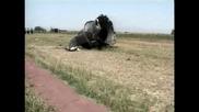 Ирански самолет катастрофира, жертвите са 168