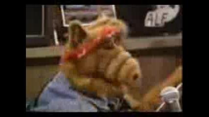Alf - Toi Prodaljava