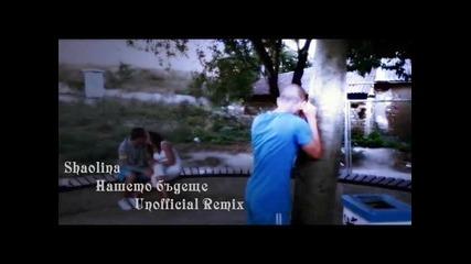 Shaolina - Нашето бъдеще (unofficial Remix)