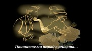 Гръцко! Giorgos Giasemis 2013 - Parakalo - Моля Ви (превод)
